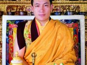 Official Portrait of His Holiness Karmapa Thaye Dorje