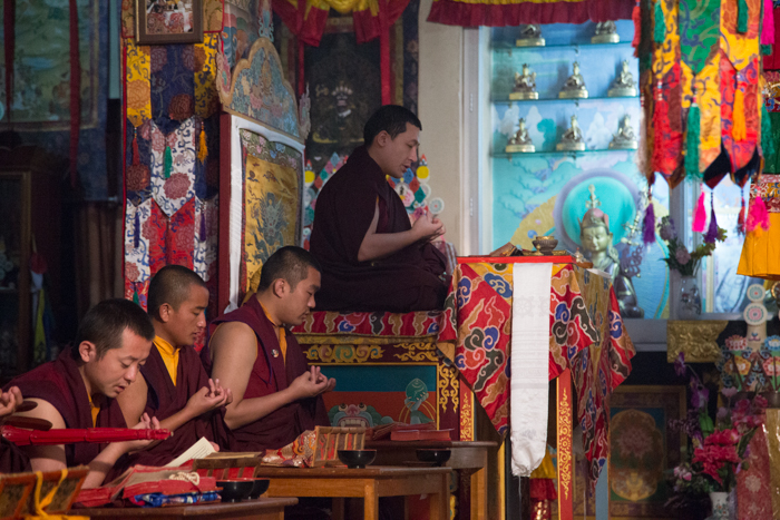 His Holiness Gyalwa Karmapa and Rinpoches during the Grand Mahakala Puja