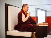 Thaye Dorje, His Holiness the 17th Gyalwa Karmapa. Photo / Volen Evtimov