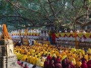 The Kagyu Monlam 2014 will be the major gathering of Kagyu practitioners in the year. Photo / Magda Jungowska