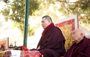 Thaye Dorje, His Holiness the 17th Gyalwa Karmapa, leads prayers under the Bodhi Tree, where the historical Buddha attained enlightenment. Kagyu Monlam, Bodh Gaya, December 2018