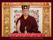 Official Portrait of Thaye Dorje, His Holiness the 17th Gyalwa Karmapa