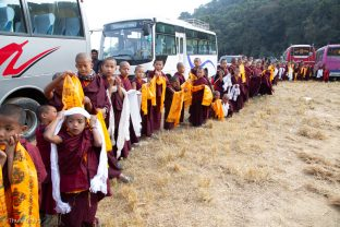 Young monks line up outside the Sharminub Institute waiting for Karmapa's arrival