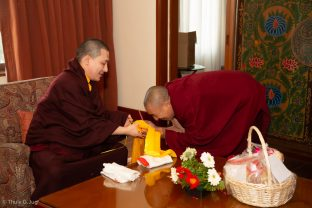 Audiences with Karmapa