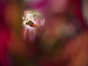 Thaye Dorje, His Holiness the 17th Gyalwa Karmapa, on day three of the 2019 Kagyu Monlam, Bodh Gaya, India, December 2019 (Photo/Tokpa Korlo)
