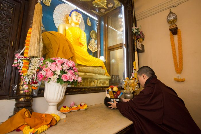 Thaye Dorje, His Holiness the 17th Gyalwa Karmapa, pays respects to the Buddha. Photo / Thule Jug
