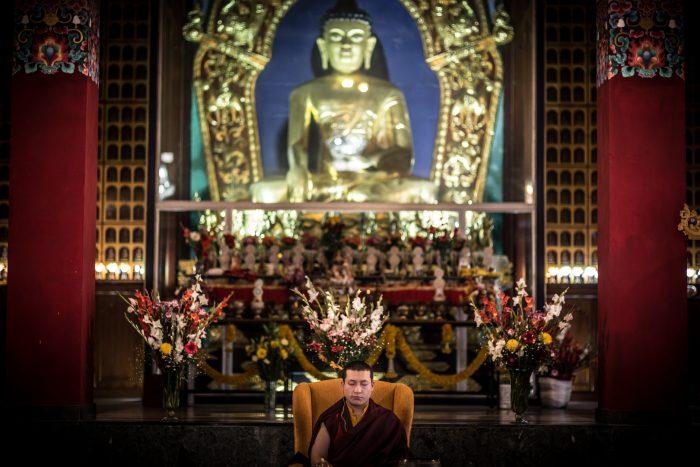 Thaye Dorje, His Holiness the 17th Gyalwa Karmapa in KIBI. Photo / Thule Jug