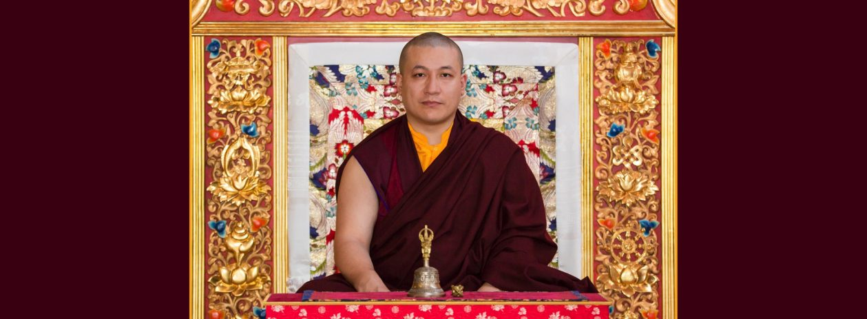 Official portrait of Thaye Dorje, His Holiness the 17th Gyalwa Karmapa. Photo / Thule Jug