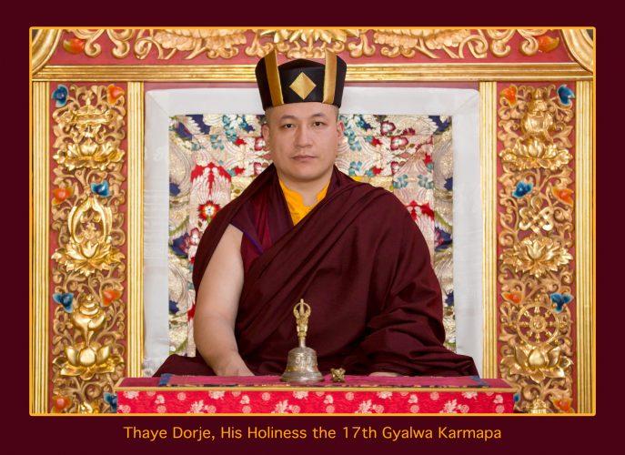 Official portrait of Thaye Dorje, His Holiness the 17th Gyalwa Karmapa. Photo / Thule Jug
