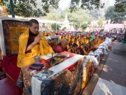 Thaye Dorje, His Holiness the 17th Gyalwa Karmapa, leading the ceremonies at the Kagyu Monlam 2014. Photo / Thule Jug